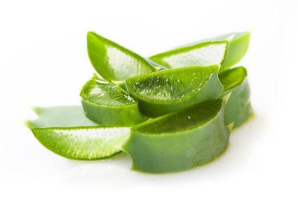 Aloe vera, symbole de beauté, de santé et de fortune
