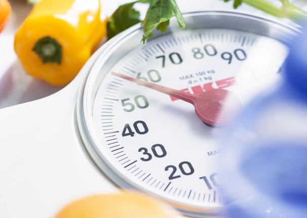 Le peptide Val-Val-Tyr-Pro limite l'accumulation des graisses