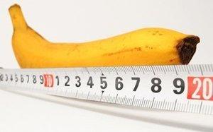 la taille du pénis et les doigts