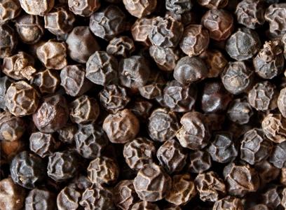 biopérine, extrait pur de poivre noir standardisé à 95% de pipérine