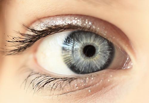 mouche devant oeil