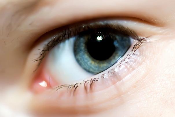 Protéger la vue